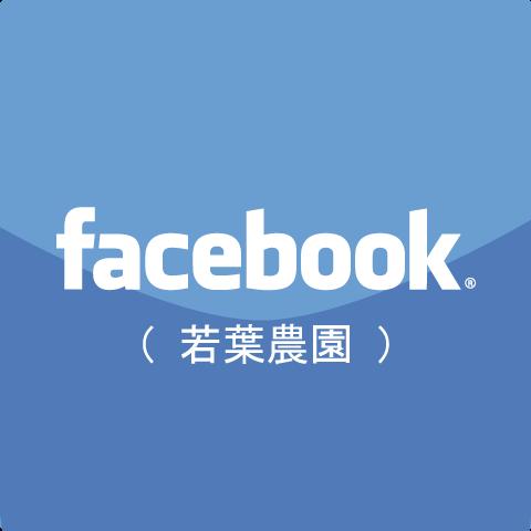 Fakcebook(若葉農園)