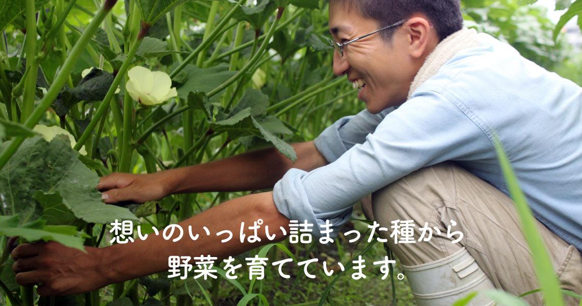 想いのいっぱい詰まった種から野菜を育てています。