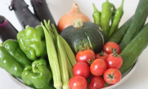 若葉農園の野菜