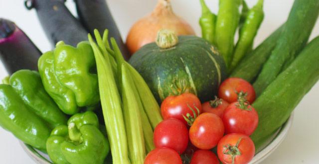 若葉農園の定期宅配野菜セット
